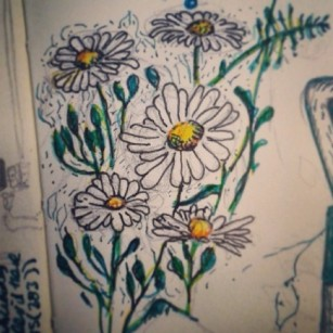 14/365. Daisies. Forgot to post this yesterday. Pencil, V-ball, coloured markers. Notebook: Zebulon. https://instagram.com/p/pjLrUNnyyz/