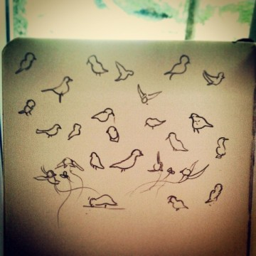 36/365. Early birds catching worms, flies and seeds. Two sparrows were out maneuvering each other to catch a big moth like thing. (Tried to draw that down the bottom there) Pencil. Notebook: Zebulon. https://instagram.com/p/qdqoGUHy5E/