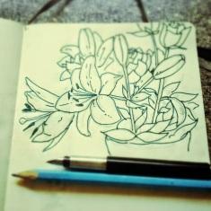 49/365. Flars. I fckn luv flars. Pencil and fountain pen. Notebook: Ethel. https://instagram.com/p/qqr65THyzP/