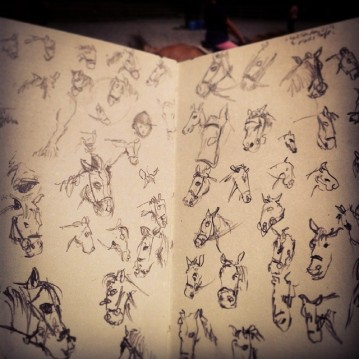 8/365. Page of horse heads. Drawn during Second Eldests riding lesson. http://instagram.com/p/pOYdMiny5n/