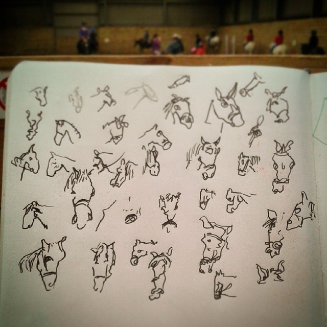 73/364 Heads of moving horses, drawn without looking. Straight to V-ball. Notebook: Ethel https://instagram.com/p/tuokIGnyw9/