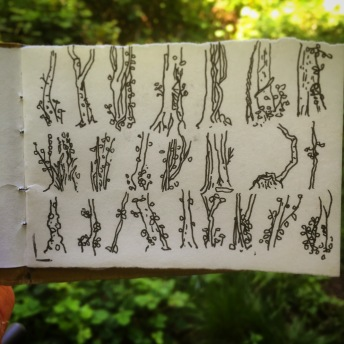 84/365 Tree stumps drawn on the slow move in Leigh Woods. Pen Notebook: Artemis