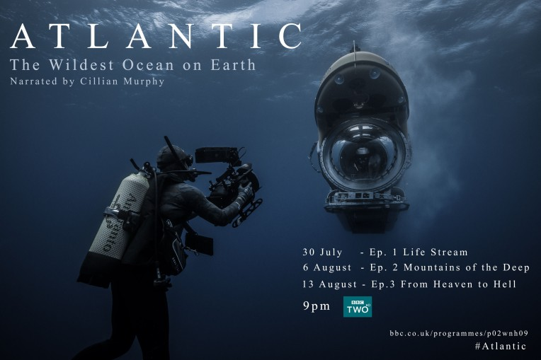 ATLANTIC_TX_CARD