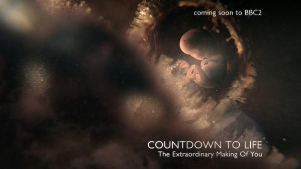 Countdown to Life