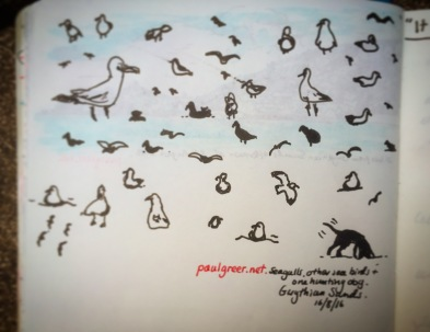155/365 Seagulls, other sea birds and one hunting dog. Gwithian Sands 16.08.16 V-ball Notebook: Myrtle