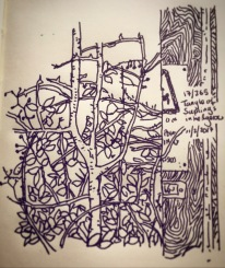 170/365Tangle of saplings in hedgerow with accompanying electric cable pole and hazard warning. Straight To V-ball. Notebook: Ichabod.