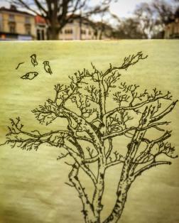 171/365Whiteladies Road Tree. 30 mins Uniball micro Notebook: Ichabod (Process videos uploaded to Instagram Stories)