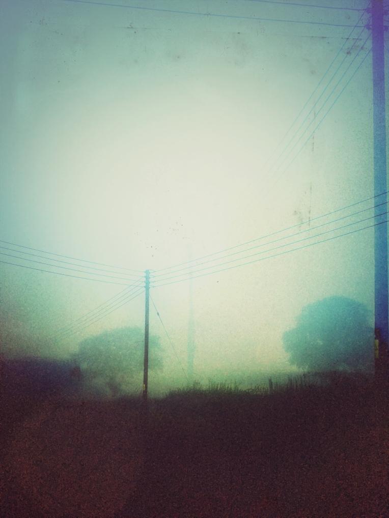 Somerset Fog