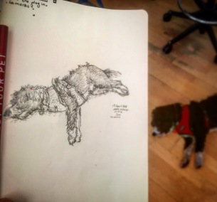196/365 Sleeping office dog on a hot day. Drawn whilst waiting for various render tests. ✏️ 🐕 📓 🌞 Pencil. 10 mins Notebook: Gilbert