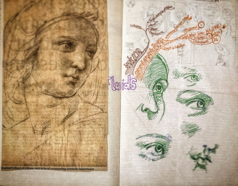 Notebook Ethel, Spread Eighteen. Newspaper clipping of Raphael's Head of a Muse, some copying of that image and the beginnings of a mind map on fluid dynamics. 👁 📓 🗺