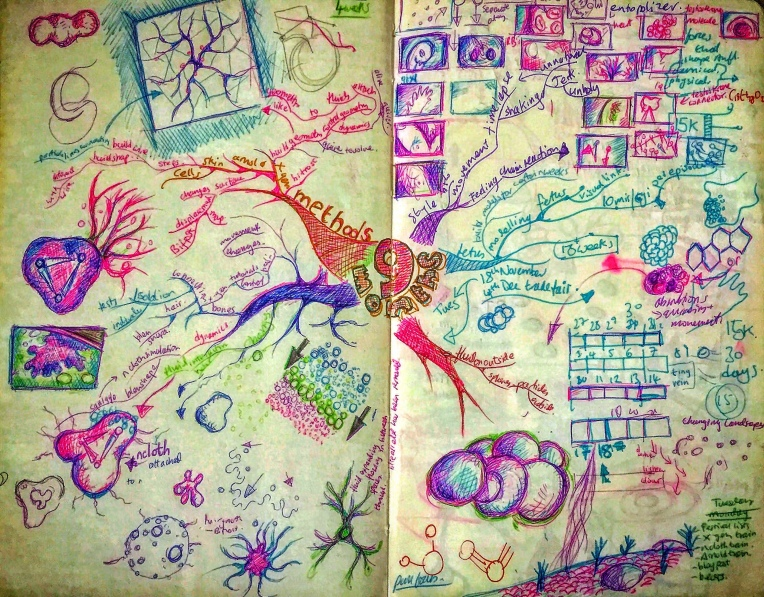 Notebook Ethel, Spread Twenty-Six. Mind mapping notes for the content graphics of Countdown To Life. Ideas, concepts, storyboards, techniques. 📓 🕷 💓